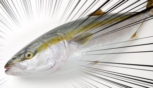 お金に余裕が無い人は趣味に釣りは若干厳しい理由。利益だけで言うとほぼ赤字。・・・だが値段だけじゃない!!