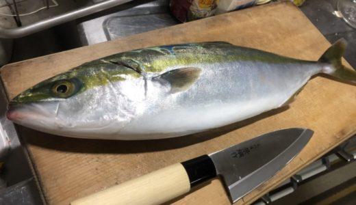 四国の魚介類の安さは異常?関東に住んでいた頃とは比べ物にならないぐらい安くて新鮮で美味しい!!
